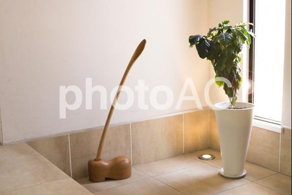 植物のある生活#4の写真