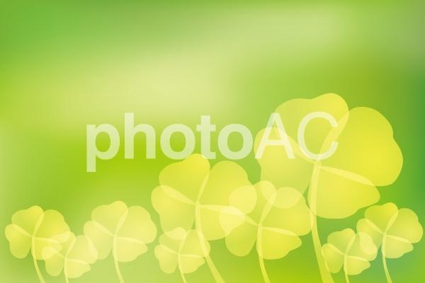 四葉のクローバーと後ろボケ抽象緑色背景素材の写真