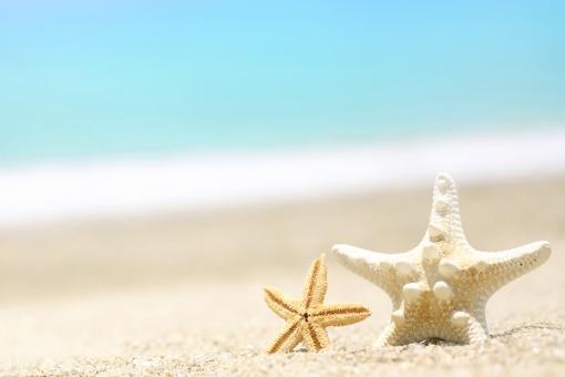 季節 夏 風景 景色 自然 海 海岸 海辺 浜辺 浜 砂浜 波 ビーチ サマー マリン バカンス 夏休み 海水浴 青 白 ヒトデ 貝 暑中見舞い
