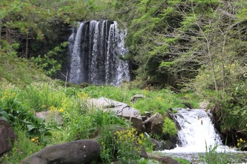 唐沢の滝 水量豊か 涼しそう 新緑の林の中 マイナスイオン