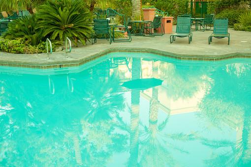 木 樹木 南国植物 葉 葉っぱ 緑 自然 植物 プール 水 施設 建築 建築物 椅子 休憩 休む 座る 泳ぐ 遊ぶ 運動 水泳 手すり 屋外 室外 景観 アメリカ 外国 反射 移る テーブル 無人