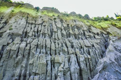 自然 植物 草 野生 崖 岩肌 岩壁 苔 葉 葉っぱ 緑 グレー ねずみ色 空 灰色 曇り 垂直 厳しい 風景 景色 フィリピン 外国 熱帯 東南アジア 島国 無人 急勾配