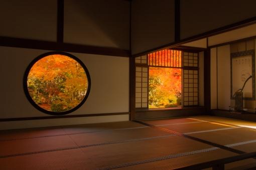 京都 紅葉 源光庵の写真