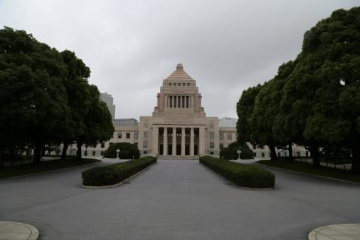 国会議事堂 参議院 衆議院 永田町 東京 日本 japan 国会 建物 空 曇り 余白 政治 夏