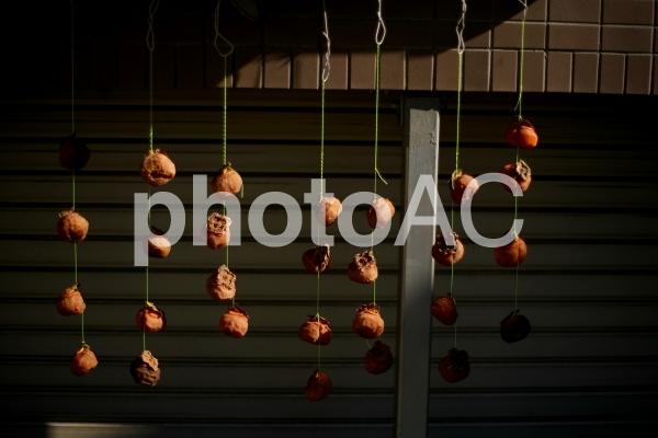 干し柿の写真
