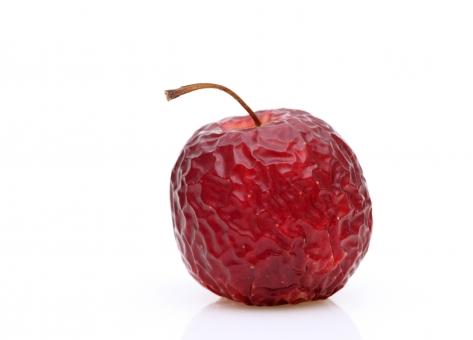リンゴ りんご 林檎 果物 フルーツ 古い 皺 しわ シワ 腐る 腐敗 萎びた しなびた 萎びる 傷む 悪い でこぼこ しわしわ 乾燥 不健康 皮 干からびる ダメージ 赤 赤色 食べ物 食材 自然食品 自然 植物 実 茎 農産物 果実 色 アップ クローズアップ 余白 コピースペース 1個 白バック 白背景 スタジオ撮影 白 背景 1つ 衰退