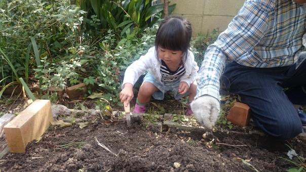 家庭菜園 土いじり 子ども 子供 女児 日本人 girl child kids japanese garden 園児 幼児 庭