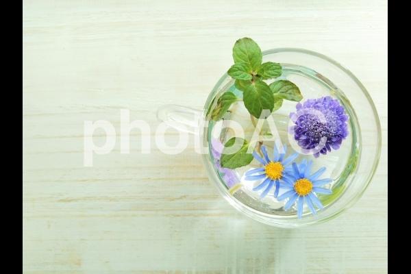 カップに浮く花とミントの写真