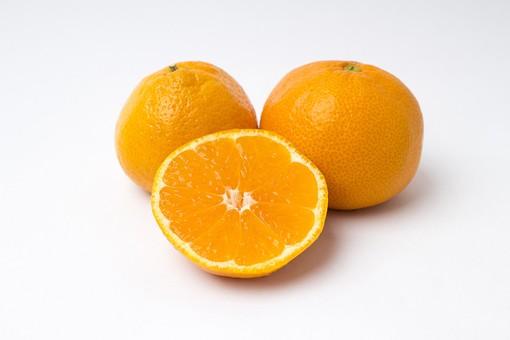 フルーツ 果物 柑橘 柑橘系 柑橘類 白背景 白バック ホワイト ミカン 蜜柑 みかん オレンジ 皮 皮つき 食べ物 デザート フレッシュ 新鮮 カット 切り口 断面 切る まるごと 野菜 丸い 丸 ヘタ こたつ 美味しい 愛媛