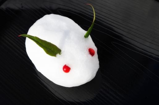 ゆきうさぎ ユキウサギ 雪うさぎ 雪ウサギ 雪兎 白 南天 南天の実 南天の葉 冬