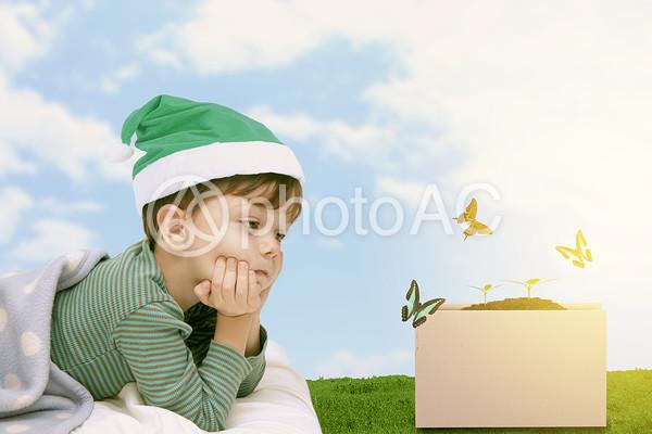 布団の中の男の子の写真