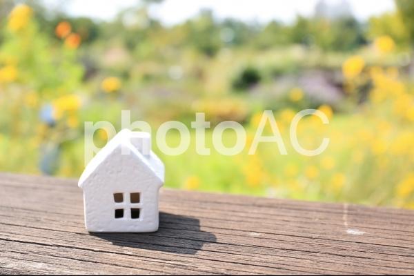 家 自然豊かの写真