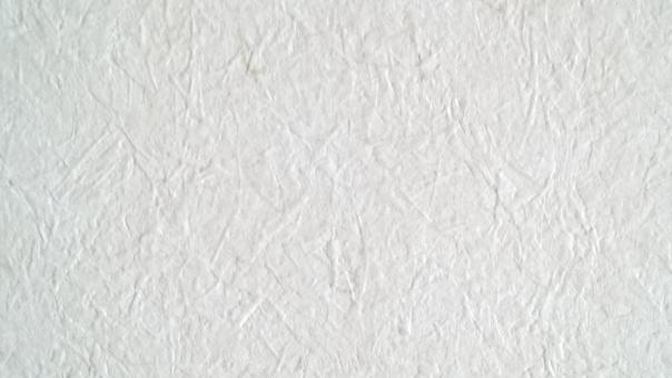 壁紙 壁 紙 内装 リフォーム リノベーション 白 白基調 白系 ホワイト 背景 模様 テクスチャ クラフト 住宅 淡色 単色 無地 素材 材料 クロス DIY 模様替え コピースペース