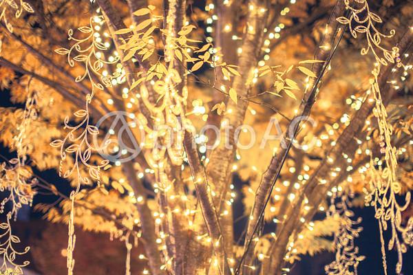 クリスマスのイルミネーション7の写真