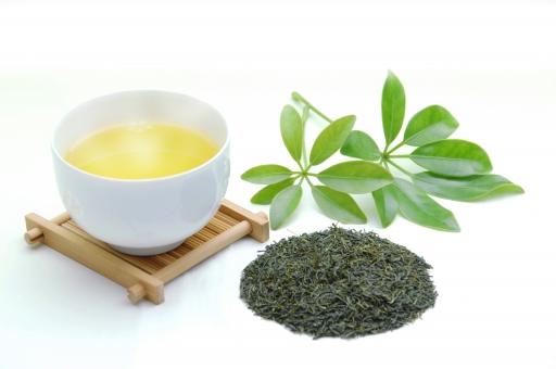 緑茶 茶 お茶 新茶 日本茶 湯気 茶葉 和 日本 リラックス 白背景 白バック グリーンティー