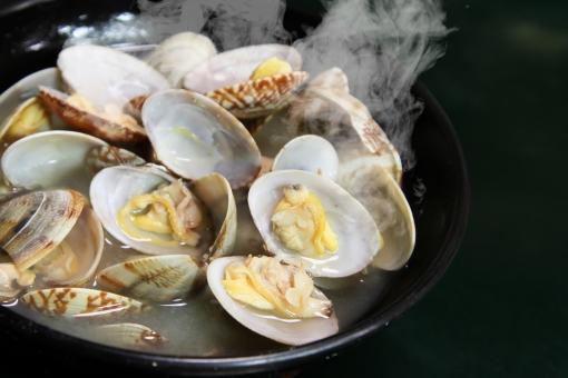 味噌汁 出汁 あさり 浅利 貝汁 湯気 スチーム 魚介類 クラムチャウダー 海鮮 シーフード 港町 漁師 潮干狩り 貝堀 はまぐり ほたて 帆立 miso soup 貝殻