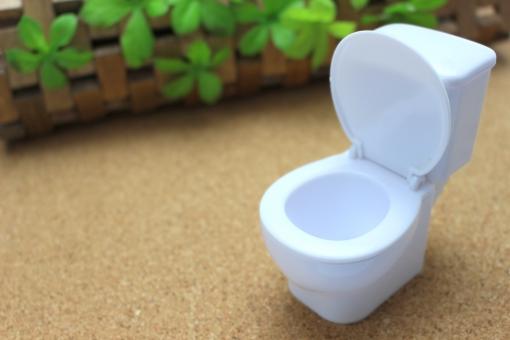 トイレ お手洗い 便所 イメージ ミニチュア 白 コピースペース テキストスペース 悩み 洋式 洋式トイレ 洋式便所 清潔 便器 日本 インテリア シンプル