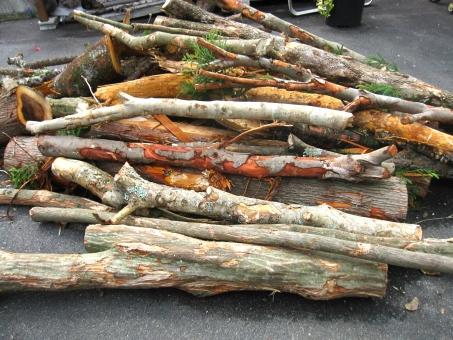 薪 薪の木 まきの木 まき ストーブ 薪ストーブ 自然 天然 素材 背景 使える 植物 伐採 間伐 切る 山積み 山積みの木 ストーブ用 薪ストーブ用 色々な木 たくさん いっぱい エコ 環境