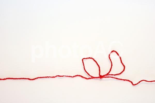 固く結ばれた絆の赤い糸3の写真