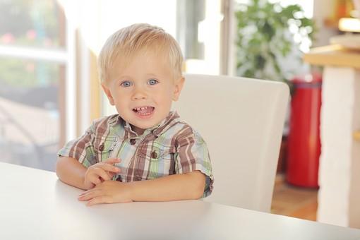 人物写真 ポートレート ポートレイト 人物 人 人間 外国人  幼児 子供  男子 男の子 男児 室内 屋内 座る 椅子 イス 窓 窓際 シャツ チェック ブロンド 金髪 笑顔 笑み テーブル mdmk001