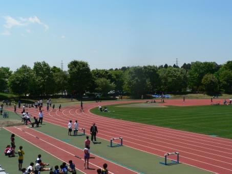 競技場 運動 スポーツ ハードル トラック 12 競技 選手 練習 学生 距離