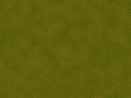地面 大地 芝生 天然芝 人工芝 芝 緑色 緑 一面 前面 背景 植物 葉 草 グラウンド 広場 フィールド バックグラウンド 背景素材 テクスチャ テクスチャー 模様 パターン 単色 自然 草葉 俯瞰 枯れる コピースペース