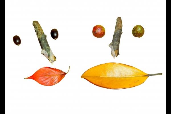 切り抜き素材 秋の素材で顔 男女セットの写真