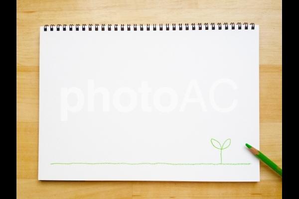 スケッチブックと色鉛筆で描いた芽の背景の写真